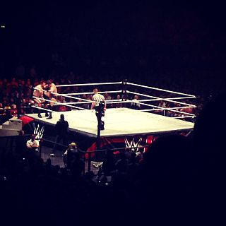 House show Untelevised professional wrestling event