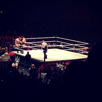 House show - Sheamus defeated The Miz at a WWE Live Event at the Genting Arena in Birmingham, England