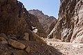 Wadi Gnai 2020-03-08-10.jpg