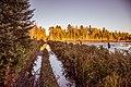 Washed-Out Road, King Lake, Michigan (30262871953).jpg