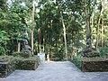 Wat Umong6.JPG