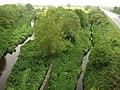 Watercourses at Cock's Bridge - geograph.org.uk - 1308562.jpg