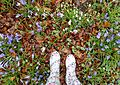 Wellies and snowdrops.JPG