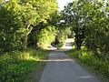 Wendalinus-Radweg, Anstieg Tholey.jpg