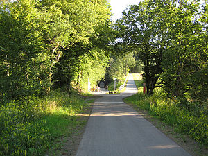 Sankt Wendel - Wendalinus cycle track, ascension near Tholey