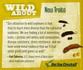 Wild About- New Traits, Square (19347656294).jpg