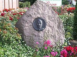 W. Kordes' Söhne - Memorial stone for Wilhelm Kordes in Klein Offenseth-Sparrieshoop
