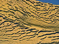 Wind Erosion Features in Wadi Al-Hitan.jpg