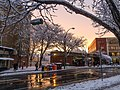 Winter Sunset in Somerville.jpg