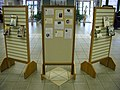 Womens History Month back display (2313541800).jpg