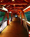 Wood - panoramio (4).jpg