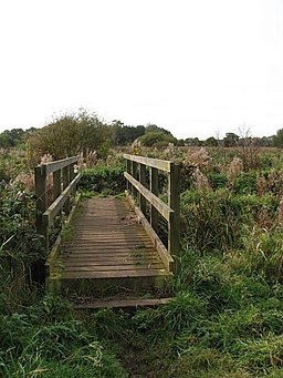 Wooden footbridge - geograph.org.uk - 1020825