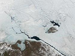 Wrangelisland.jpg