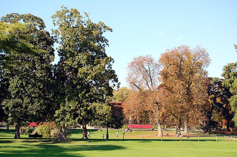 File xdsc 7617 jardin public de wikimedia for Jardin public bordeaux