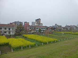 Honghu - Xintan, one of the towns of Honghu City, seen from a Yangtze levee