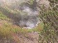 Yellowstone Fumarole.jpg
