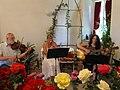 Zámek Veltrusy. Soutěžní výstava růží 2012 15.JPG