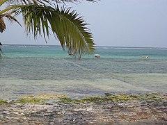 Zanzibar east coast beach.jpg