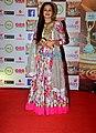 Zarina Wahab graces The Indian Television Academy Awards 2017 (16).jpg