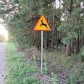 Znak--21praylm.jpg