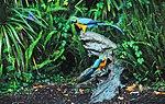 Zoo de Lisboa by Juntas 12.jpg