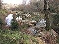 Zoo des 3 vallées - 2015-01-02 - i3332.jpg