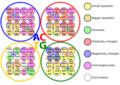 """""""Flowerbed"""" table of genetic code.png"""