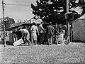 """T.W. Collins"" stall (AM 87111-1).jpg"