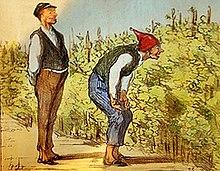 Vigne wikip dia - Maladie du raisin photo ...