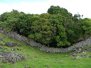Ihumātao locality in New Zealand
