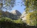 Κοιλάδα Τεμπών - Άλσος με θέα τα βράχια πάνω από την Αγία Παρασκευή.jpg