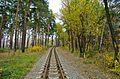 Детская железная дорога - panoramio (4).jpg