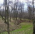 Долина реки Бурункуля (12) - panoramio.jpg