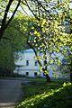 Май в Ботаническом саду.jpg