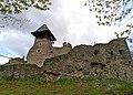 Невицький замок, біля села Кам'яниця Ужгородського району Закарпатської області.jpg