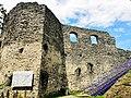 Невицький замок (10).jpg