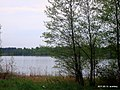 Озеро - panoramio (12).jpg