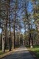 Парк деревни Дугино(2).jpg
