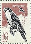 Почтовая марка СССР № 3290. 1965. Хищные птицы.jpg
