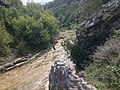 Река Петраница - общ изглед.jpg