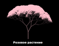 Розовое растение.png
