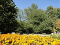 "София ""Южният Парк"" 07 October 2012 - panoramio (18).jpg"