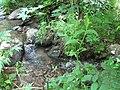 Արզականի և Մեղրաձորի արգելավայր-178.jpg