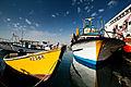 הסירות בנמל יפו.jpg