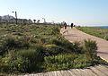 טיילת חוף שקמונה.jpg