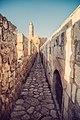 מגדל דוד ירושלים צילום ורד פיצ'רסקי.jpg