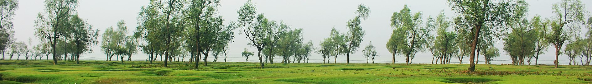 গুলিয়াখালী সমুদ্র সৈকত চট্টগ্রাম জেলার সীতাকুণ্ড (cropped).jpg
