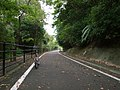 りんりんロード RINRIN Cycling Road - panoramio.jpg
