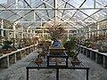 中山植物园(北园)景色06.jpg