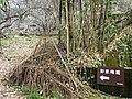 彭家梅園 The Peng's Plum Garden - panoramio (1).jpg
